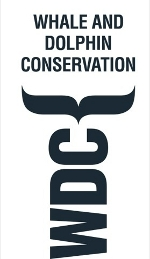 whale and dolphin conservation_mini